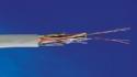 AMP Кабель на основе витой пары Cat.3, UTP, 24 AWG, 25 пар, LSZH, катушка 500 м